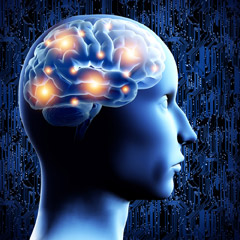 brain-mindfulness